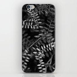 Black and white nature iPhone Skin