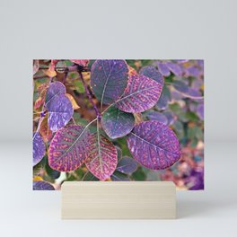 Ultra Violet Indian Summer Mini Art Print