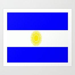 Flag of Argentina Art Print