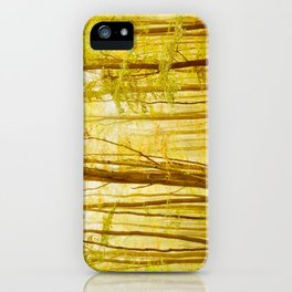 autumn scenery iPhone Case