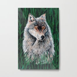 Grey Canadian Wolf Metal Print