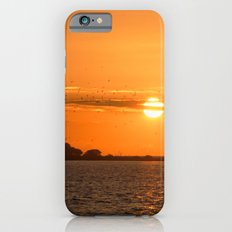 Sunrise Migration iPhone 6s Slim Case