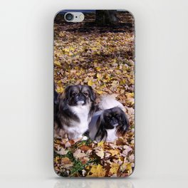 Playing in the leaves iPhone Skin