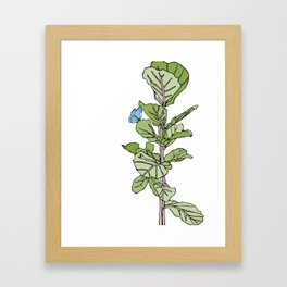 Lined Fig Tree and Blue Butterfly Framed Art Print