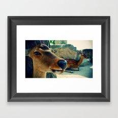 Multiple Deer is called Deer Framed Art Print