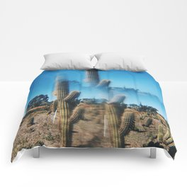 The more cacti. The better. Comforters