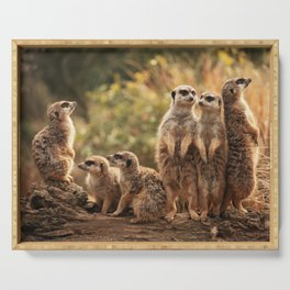 Meerkat Family Photography Serving Tray