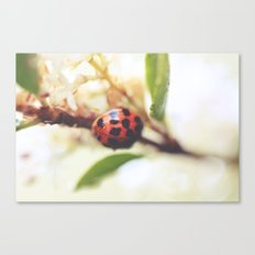 Living With Phantoms Canvas Print
