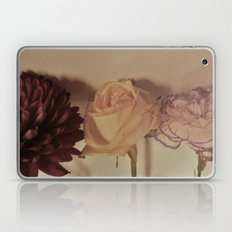 Afternoon Laptop & iPad Skin