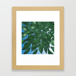 Avocado Sky Framed Art Print