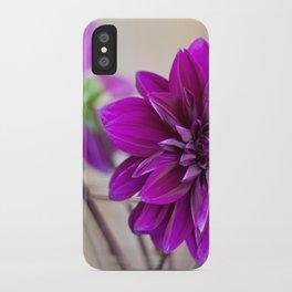 dahlias iPhone Case