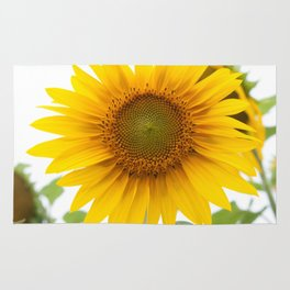 Sunflower #1 #decor #art #society6 Rug