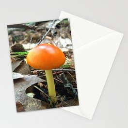 Mushroom P Stationery Cards