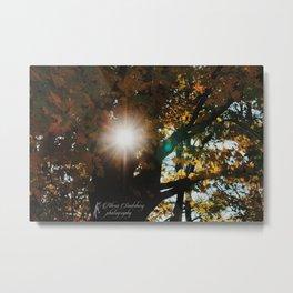 Fall Sun Metal Print