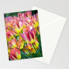 The Last Hurrah of Spring Stationery Cards