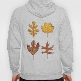 Fall Leaves Painting Hoody
