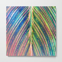 503 - Canna Leaf Abstract Metal Print