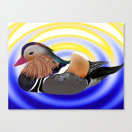 a duck Canvas Print