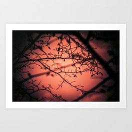Sunset... Art Print