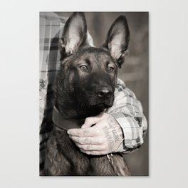 Love and protection for humans and animals Canvas Print