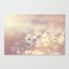 In a blur Canvas Print
