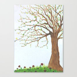 Wiley Tree  Canvas Print