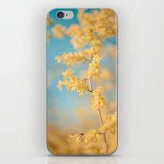 I Dream In Yellow iPhone & iPod Skin