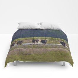 Cattle Comforters