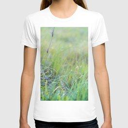 Dewey Pastures T-shirt