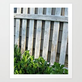 chippy gate Art Print