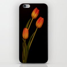 Tulip, tulip, tulip iPhone & iPod Skin