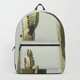 Desert Cactus 2 Backpack