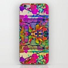 Thru the Kaleidoscope  iPhone & iPod Skin