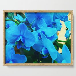 Exotic Turquoise Periwinkle Blue Orchids Serving Tray