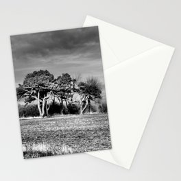 3 Trees Stationery Cards