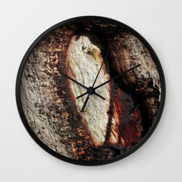 Aboriginal scarred Tree Wall Clock