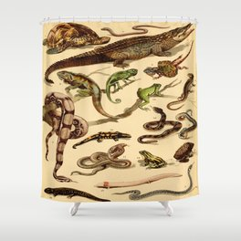 Reptiles Vintage Scientific Illustration Educational Diagrams Popular History of Animals Shower Curtain