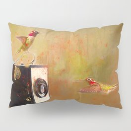 Hummingbird Photo Shoot Pillow Sham