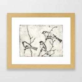 Birds Etching | Bird Illustration Art Framed Art Print