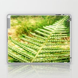 Green Fern Laptop & iPad Skin
