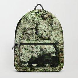 Lichen Backpack