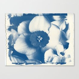 Petals by the Sea [Cyanotype Blue] Canvas Print