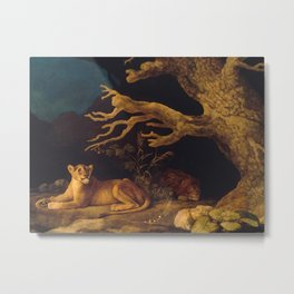 Lion and lioness - George Stubbs - 1771 Metal Print