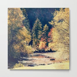 Austrian fall Metal Print