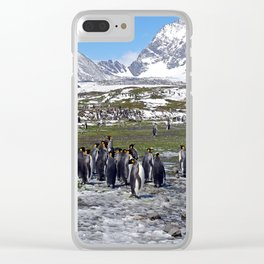 King Penguins, Snow and Glaciers Clear iPhone Case