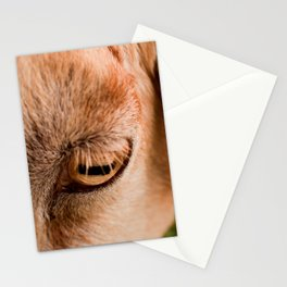 Window to a goat's soul  Stationery Cards