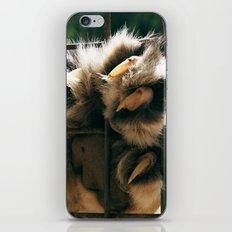 Lion Claw iPhone & iPod Skin