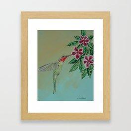 Humming bird painted Framed Art Print