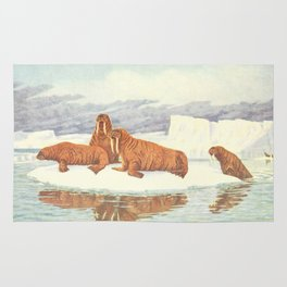 Vintage Illustration of Walruses (1917) Rug