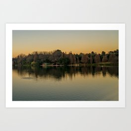 Reflection on Emmerentia Dam, Johannesburg Art Print